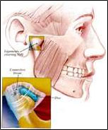 TMJ Pain Relief - Jaw Pain Relief - Woodland Hills Chiropractor